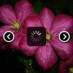 Скрипты галерей изображений на CSS
