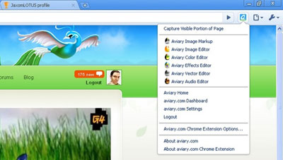 Google Chrome Aviary Screen Capture